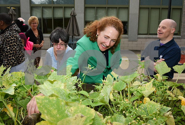 080817 Wesley Bunnell | Staff Congresswoman Elizabeth Esty toured CCARC in New Britain on Tuesday afternoon speaking to workers and clients. CCARC provides services to support adults with intellectual disabilities and their families. Congresswoman Esty tours the garden with Maria Duval, L, and Keith Font.