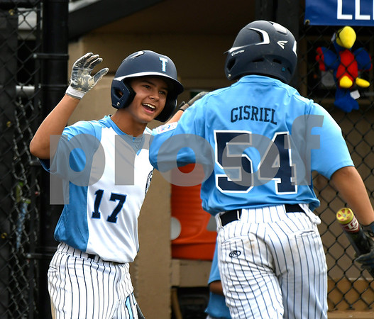 8/8/2017 Mike Orazzi | Staff Maryland's Logan Simanski (17) and Will Gisriel (54) celebrate during the Eastern Regional Little League Tournament in Bristol Tuesday morning.