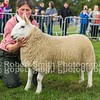 NCC (Park) Champion ewe lamb from Kelsocleugh Farming