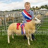Young Handler Champion Charlie Davidson with a Beltex x lamb