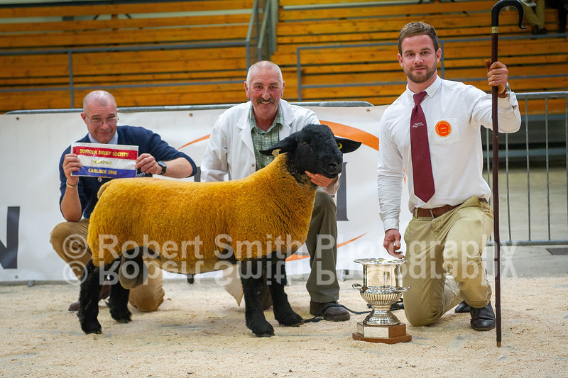 Suffolk Overall Champion lot 416