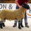 Suffolk lot 351 sold for 1500 gns