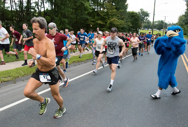 08/20/18 Wesley Bunnell | Staff Andy Barton (92) runs near the front of the pack as the St. Paul Falcon looks on during the start of annual Falcon 5K Run/Walk on Monday evening at St. Paul Catholic High School.