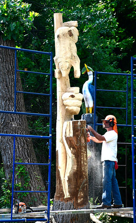 8/15/2018 Mike Orazzi | Staff Jared Welcome carves various animals into a Tulip tree at Black Bear Auto in Bristol Wednesday.