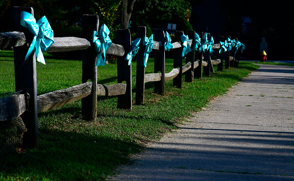 8/28/2018 Mike Orazzi | Staff Teal ribbons on the Federal Hill Green in Bristol.