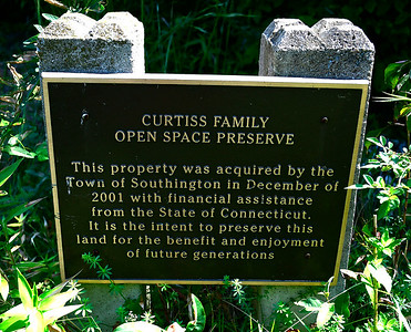 8/29/2018 Mike Orazzi | Staff The Curtiss Family Open Space Preserve in Southington off the Meriden-Waterbury Turnpike.