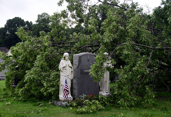 8/4/2018 Mike Orazzi   Staff A large tree damaged during an overnight storm at the St. Joseph Cemetery in Bristol Saturday.