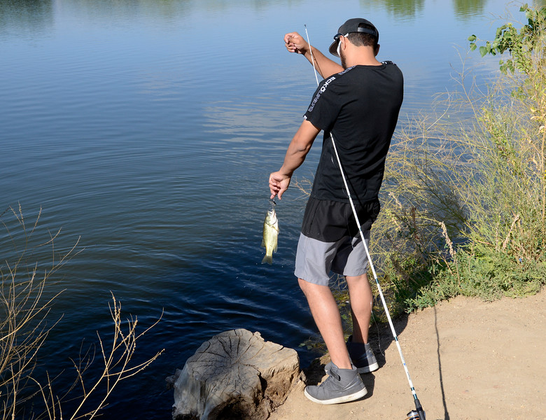 Golden Ponds Fishing Feature