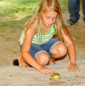 WARREN DILLAWAY / Star Beacon CHLOE CUSANO, 9, of Pierpont Township, motivates HER frog during the frog jumping contest at the 124th Pierpont Picnic in Pierpont Township on Saturday.