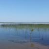 Boat launch, Lake Wosely causeway.