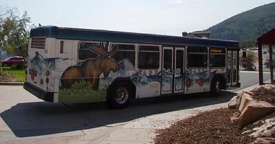 Moose Bus
