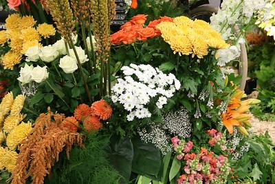 20140808-MB-Flower Parade Show Flora (20)