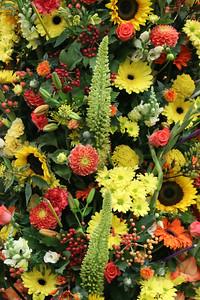 20140808-MB-Flower Parade Show Flora (27)