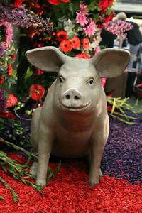 20140808-MB-Flower Parade Show Flora (16)