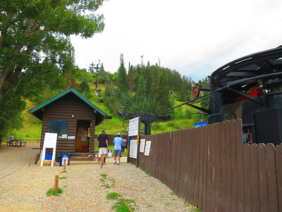 $12 to ride the ski lift to the top, then Howling down the slides.