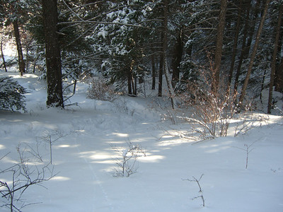 OK - for our return we're going to drop down into deep, shady, extra-snowy gully.