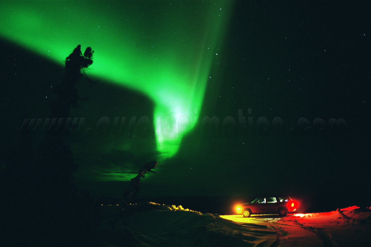 Shooting at the Arctic Circle - Alaska, February 28 2000