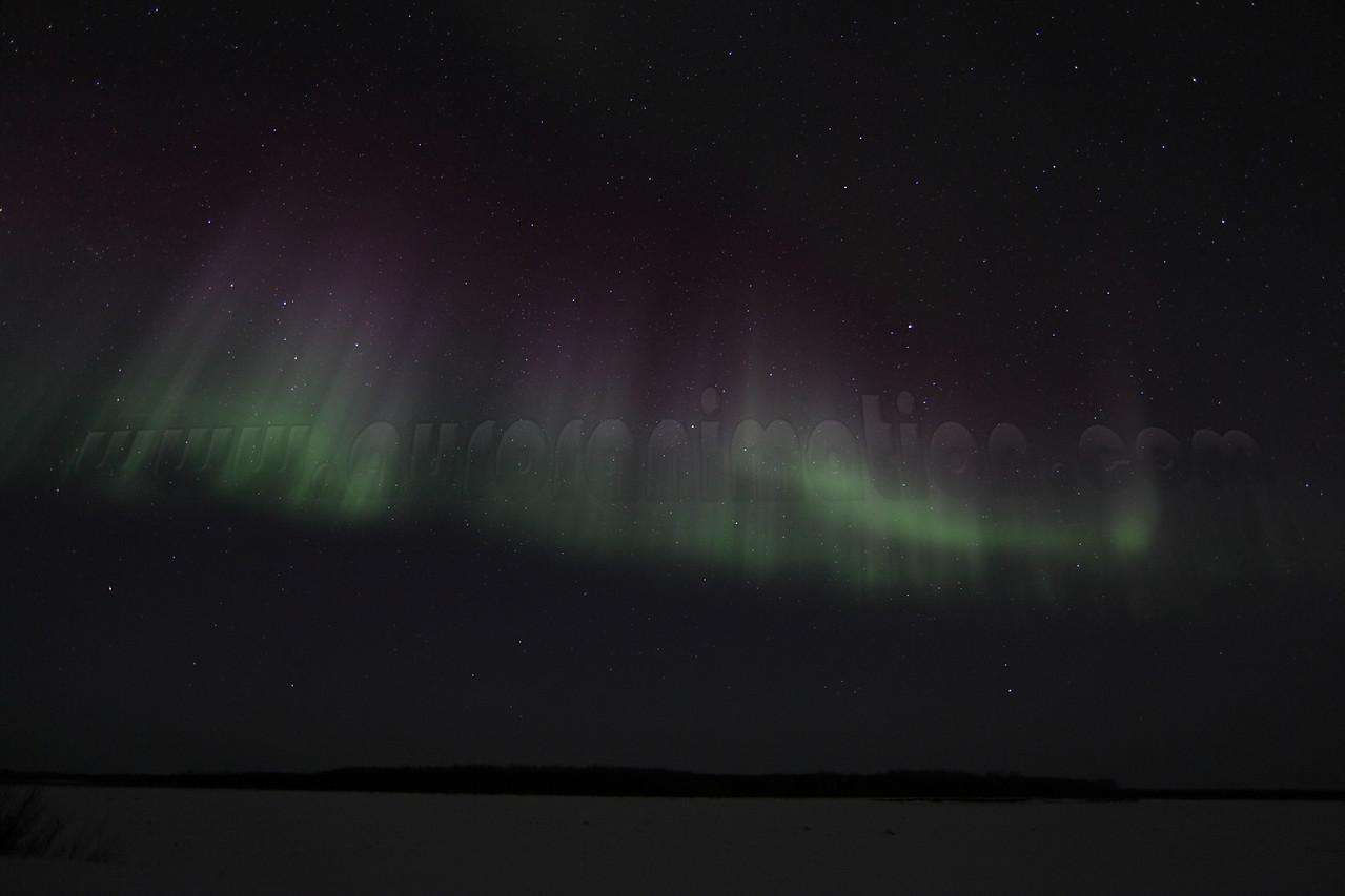 Northern Lights at the Yukon - March 1, 2011 - Circle, Alaska