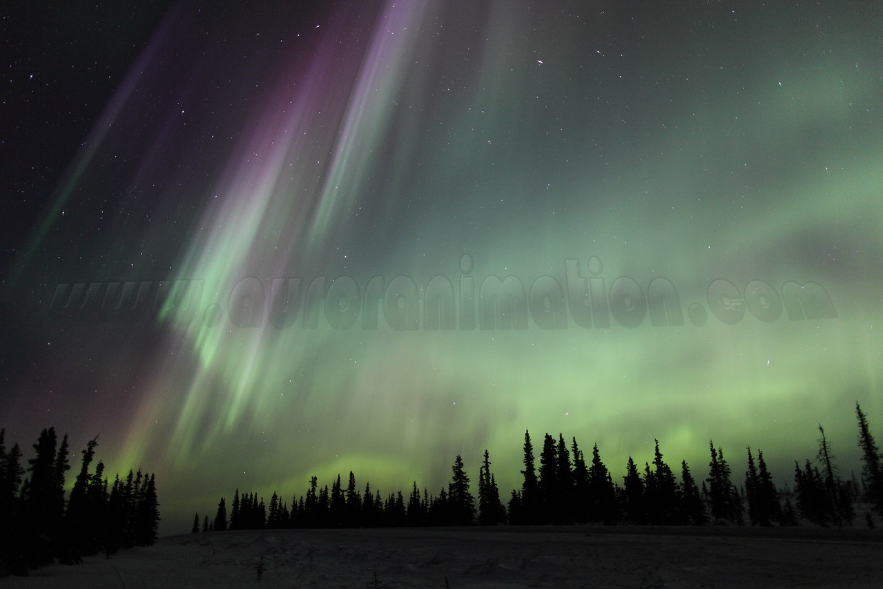 Bright and colorful auroral curtains at 03:37 AM on March 17, 2013 - Arctic Circle, Alaska<br /> <br /> Canon 5D MKII with EF 24mm f/1.4L II