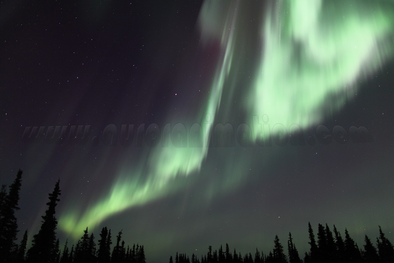 Bright auroral curtain at the Arctic Circle in Alaska on March 17, 2013 - 01:49 AM<br /> <br /> Canon 5D MKII with EF 24mm f/1.4L II
