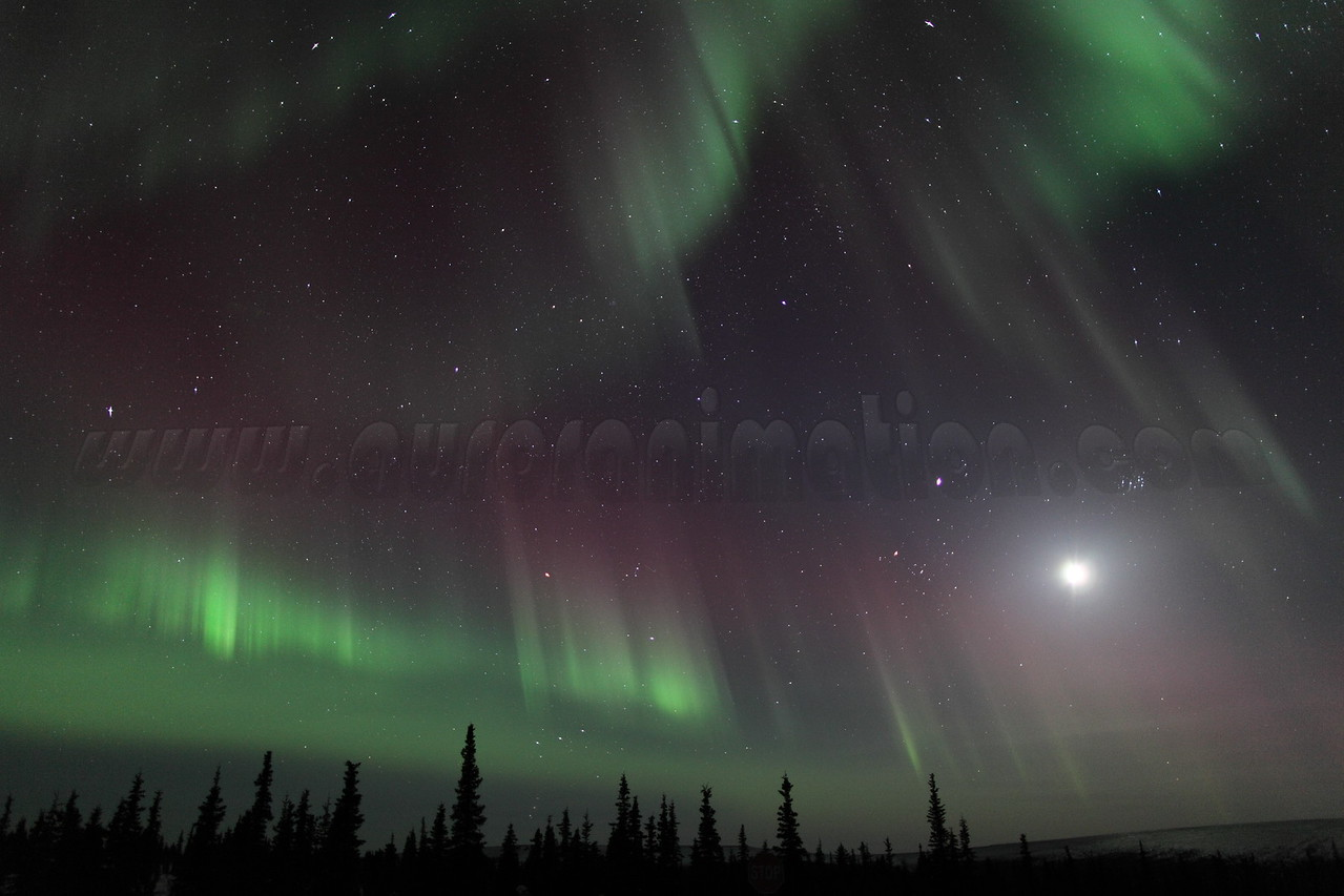Colorful Northern Lights with Moon, Jupiter and Pleiades at 00:35 AM on March 17, 2013 - Arctic Circle, Alaska<br /> Constellations: Monoceros, Canis Minor, Gemini, Orion, Taurus, Auriga and Perseus<br /> <br /> Canon 5D MKII with EF 24mm f/1.4L II