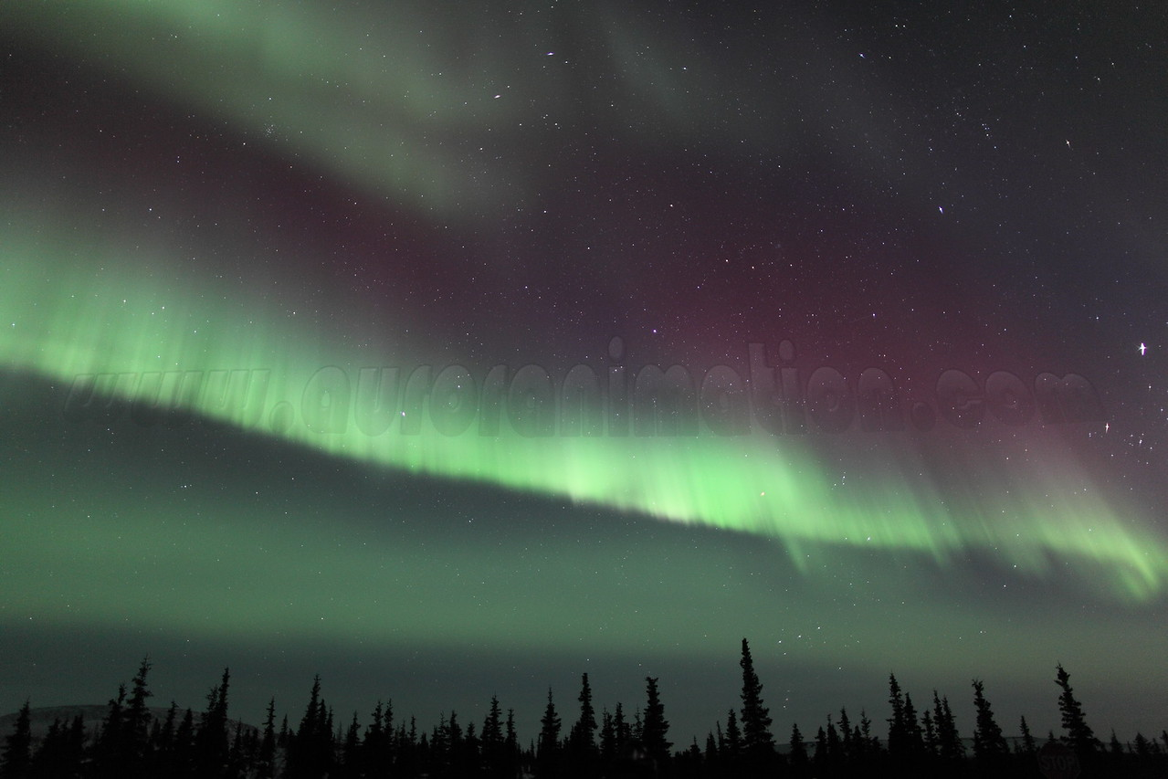 Colorful Northern Lights at 00:28 AM on March 17, 2013 - Arctic Circle, Alaska<br /> Constellations: Monoceros, Canis Minor, Gemini, Orion, Taurus, Auriga and Perseus<br /> <br /> Canon 5D MKII with EF 24mm f/1.4L II