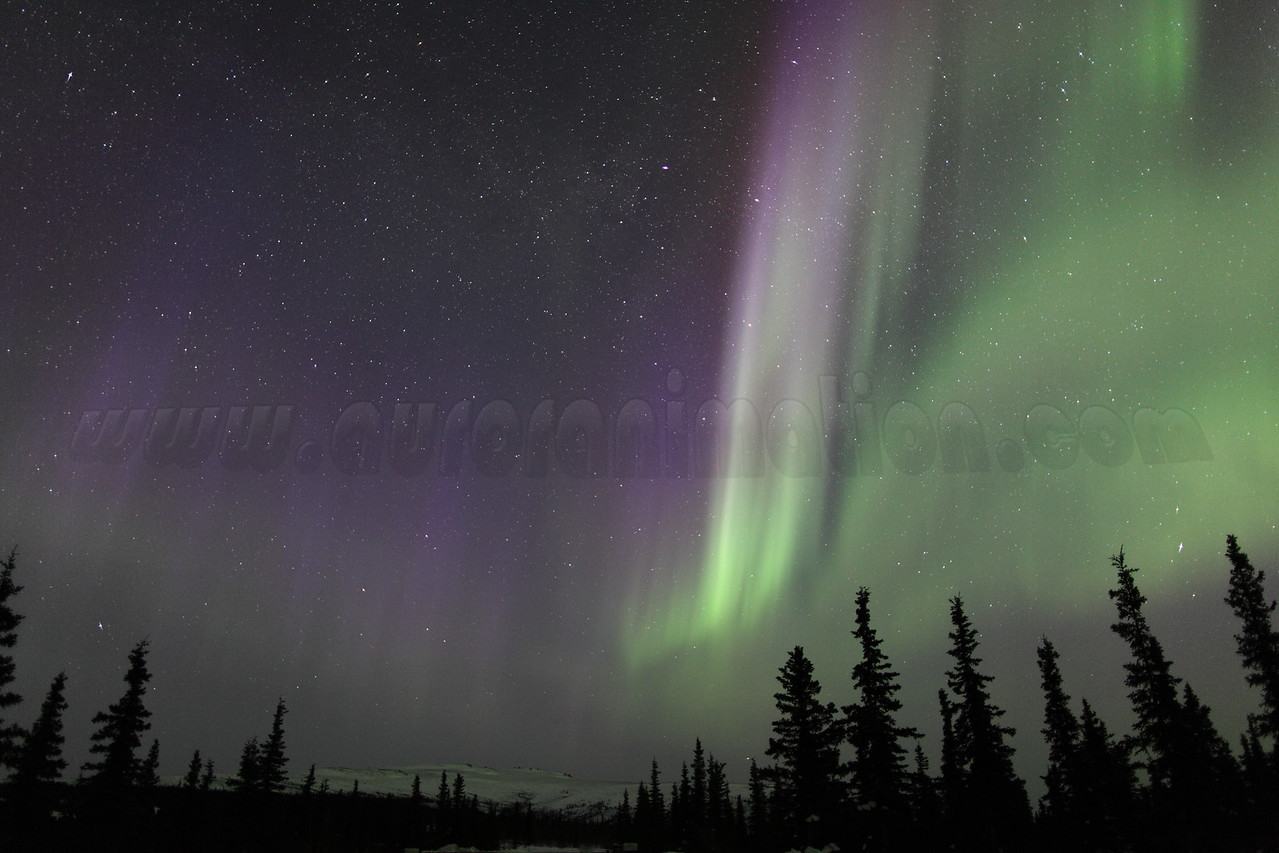 Colorful Northern Lights at 05:10 AM on March 17, 2013 - Arctic Circle, Alaska<br /> <br /> Canon 5D MKII with EF 24mm f/1.4L II