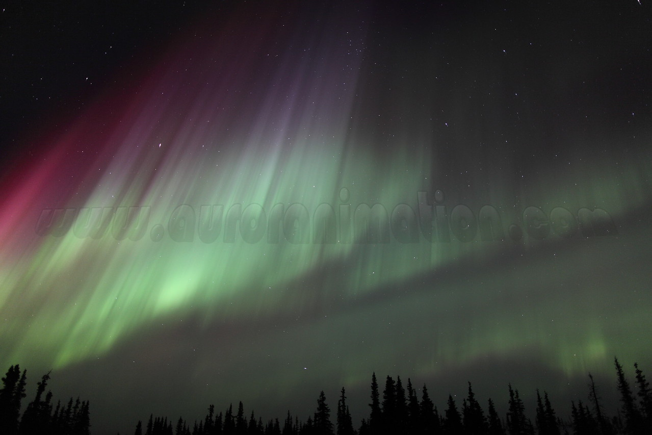 Colorful Northern Lights at the Arctic Circle in Alaska on March 17, 2013 - 01:36 AM<br /> <br /> Canon 5D MKII with EF 24mm f/1.4L II