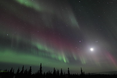 Northern Lights with Moon, Jupiter and Pleiades at 00:30 AM on March 17, 2013 - Arctic Circle, Alaska Constellations: Monoceros, Canis Minor, Gemini, Orion, Taurus, Auriga and Perseus  Canon 5D MKII with EF 24mm f/1.4L II