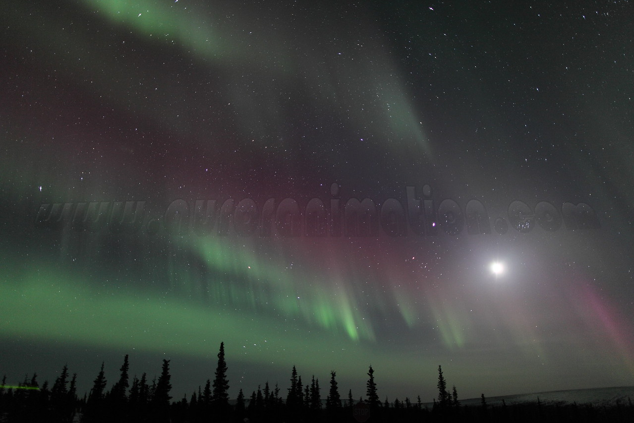 Northern Lights with Moon, Jupiter and Pleiades at 00:30 AM on March 17, 2013 - Arctic Circle, Alaska<br /> Constellations: Monoceros, Canis Minor, Gemini, Orion, Taurus, Auriga and Perseus<br /> <br /> Canon 5D MKII with EF 24mm f/1.4L II