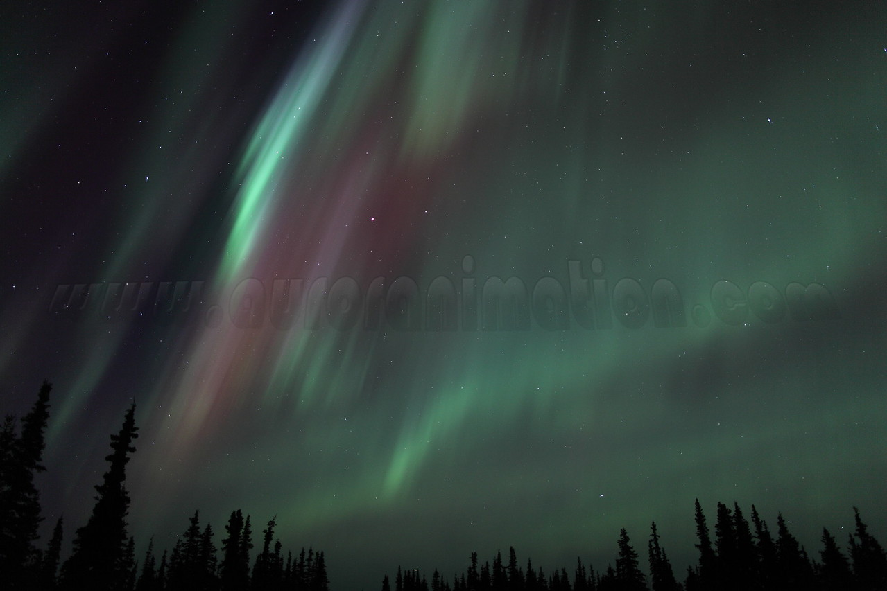 Colorful Northern Lights at the Arctic Circle in Alaska on March 17, 2013 - 01:39 AM<br /> <br /> Canon 5D MKII with EF 24mm f/1.4L II