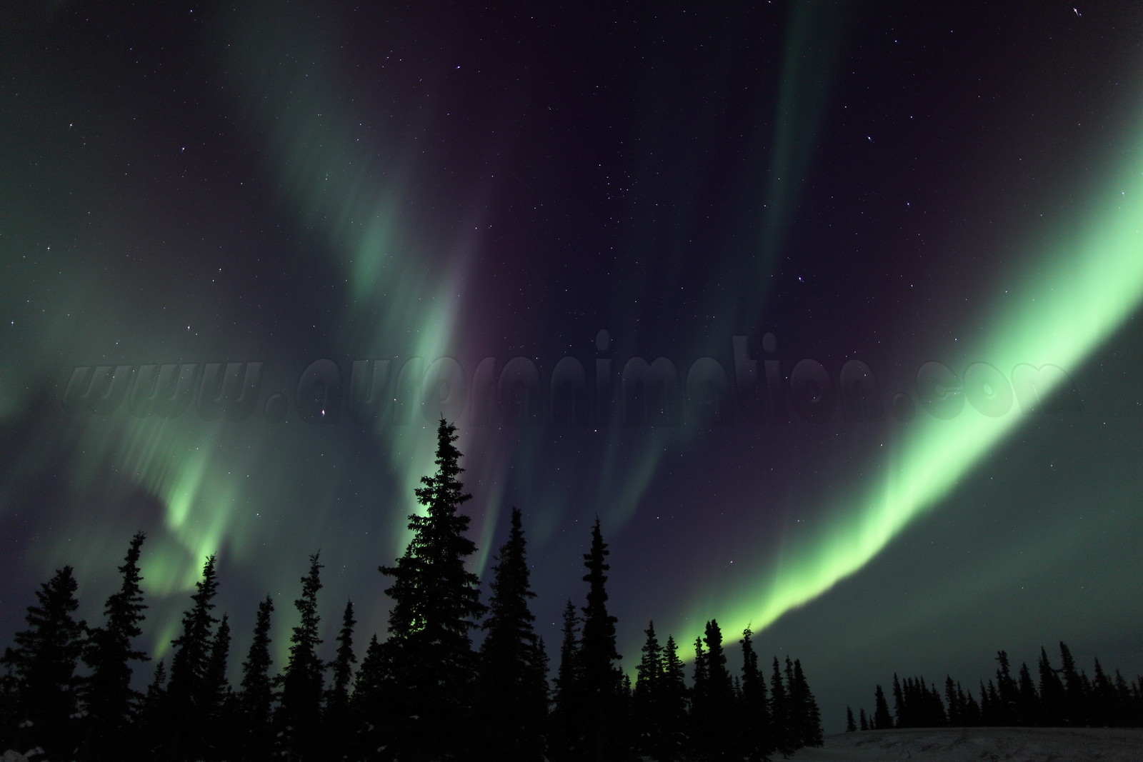 Northern Lights at the Arctic Circle in Alaska on March 16, 2013 - 11:14 PM<br /> <br /> Canon 5D MKII with EF EF 50mm f/1.2L