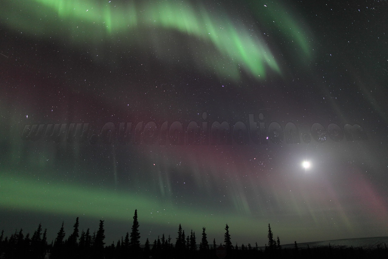 Northern Lights with Moon, Jupiter and Pleiades at 00:31 AM on March 17, 2013 - Arctic Circle, Alaska<br /> Constellations: Monoceros, Canis Minor, Gemini, Orion, Taurus, Auriga and Perseus<br /> <br /> Canon 5D MKII with EF 24mm f/1.4L II
