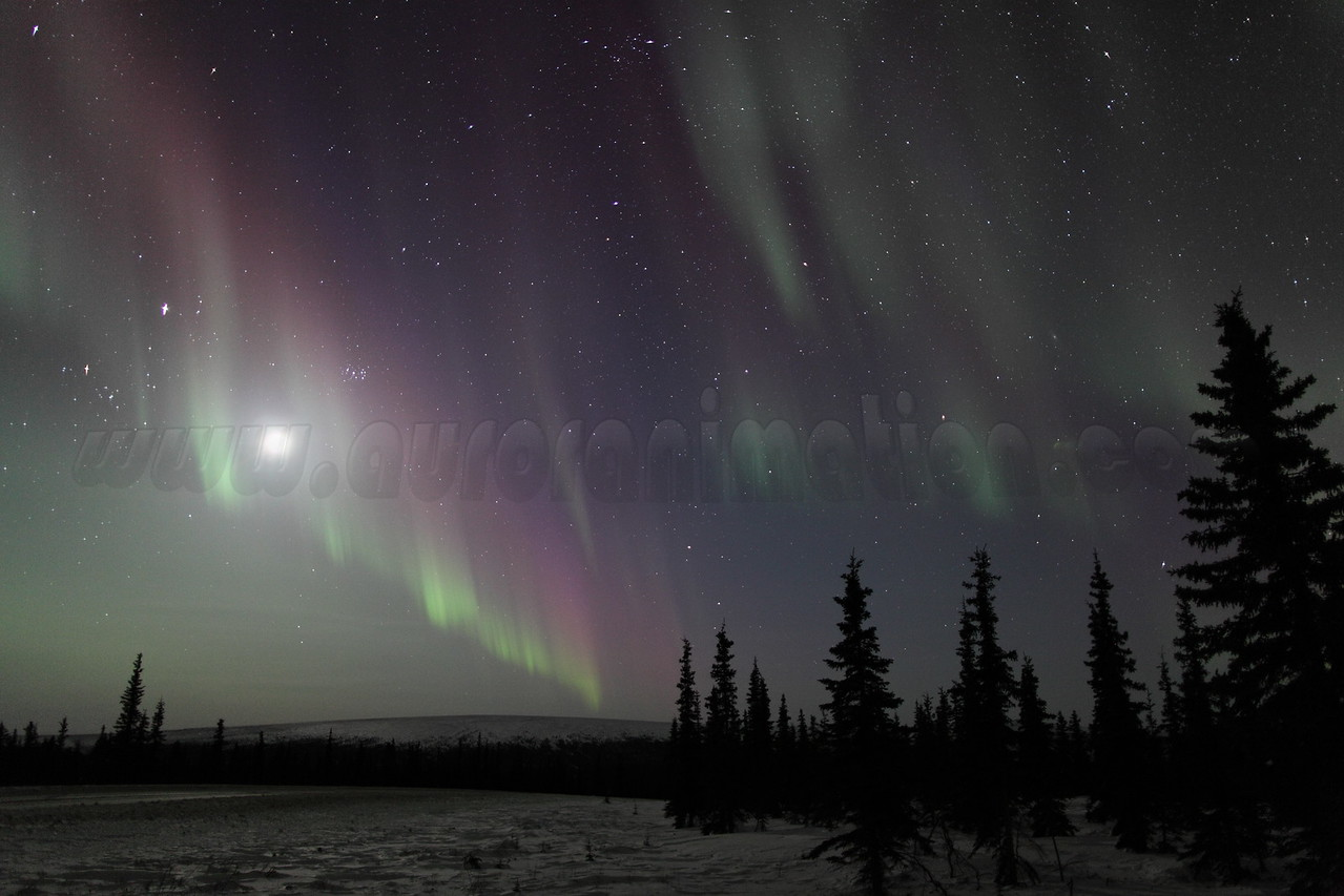 Northern Lights with Moon, Jupiter, Pleiades and constellations Taurus, Perseus and Andromeda at 00:15 AM on March 17, 2013 - Arctic Circle, Alaska<br /> <br /> Canon 5D MKII with EF 24mm f/1.4L II