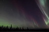 Colorful Northern Lights at 02:43 AM on March 17, 2013 - Arctic Circle, Alaska<br /> <br /> Canon 5D MKII with EF 24mm f/1.4L II