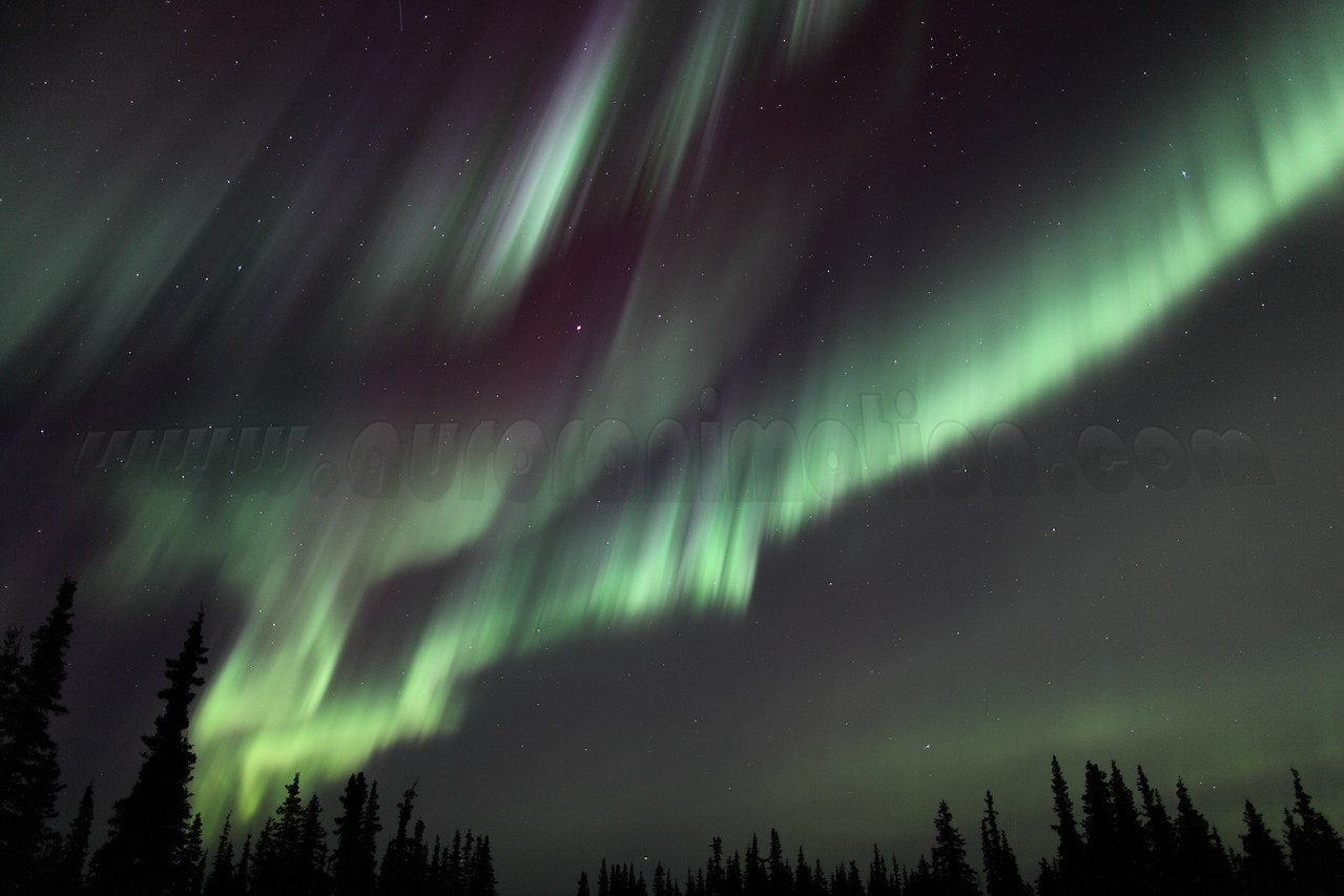 Bright and colorful Northern Lights at the Arctic Circle in Alaska on March 17, 2013 - 01:43 AM<br /> <br /> Canon 5D MKII with EF 24mm f/1.4L II