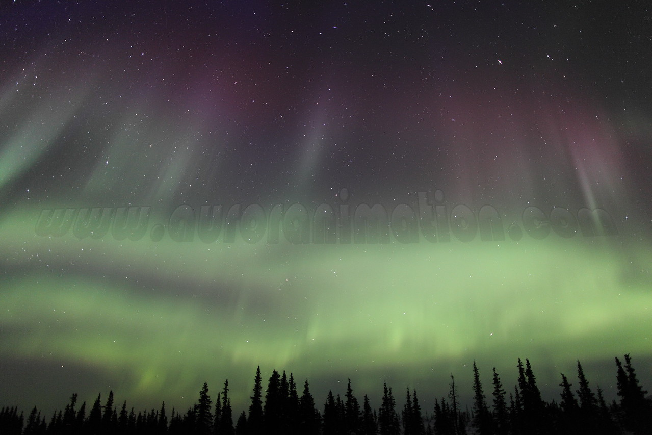 Colorful Northern Lights at 05:21 AM on March 17, 2013 - Arctic Circle, Alaska<br /> <br /> Canon 5D MKII with EF 24mm f/1.4L II