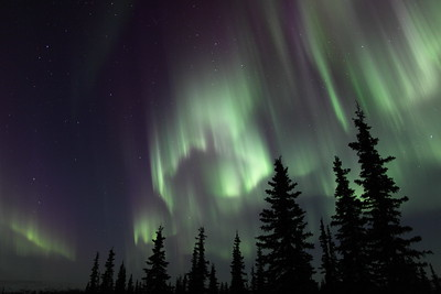 Colorful Northern Lights at the Arctic Circle in Alaska at 11:17 PM on March 16, 2013.  Canon 5D MKII with EF 24mm f/1.4L II