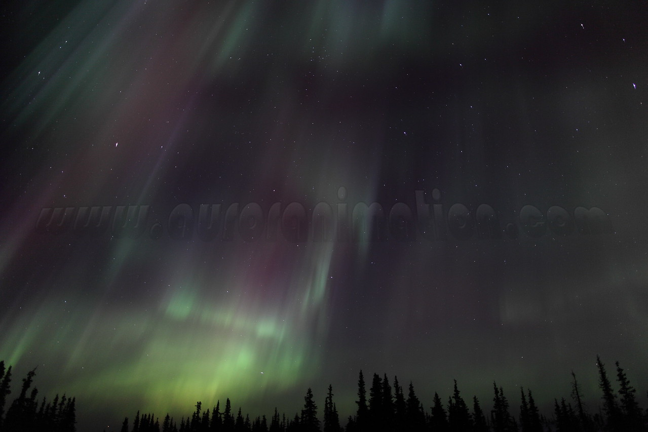 Colorful Northern Lights at the Arctic Circle in Alaska on March 17, 2013 - 01:21 AM<br /> <br /> Canon 5D MKII with EF 24mm f/1.4L II