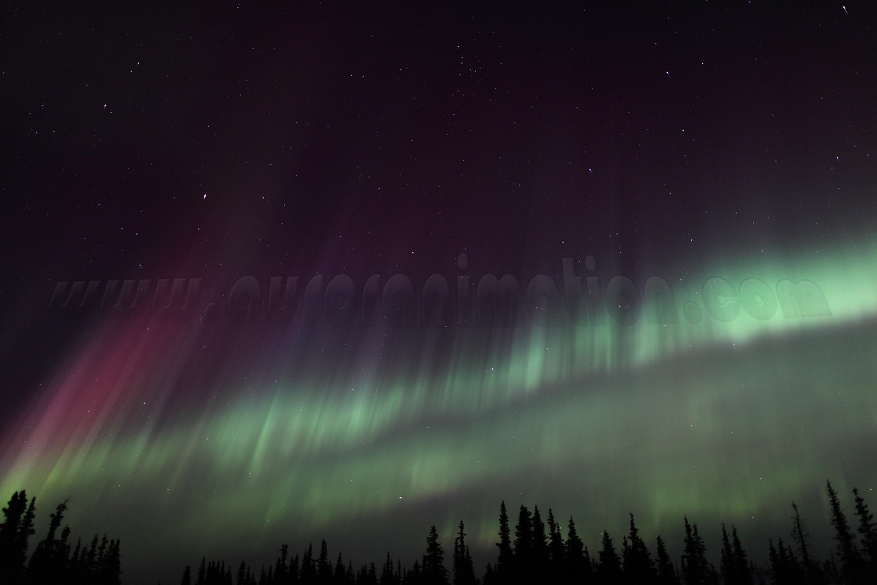 Colorful Northern Lights at the Arctic Circle in Alaska on March 17, 2013 - 01:32 AM<br /> <br /> Canon 5D MKII with EF 24mm f/1.4L II