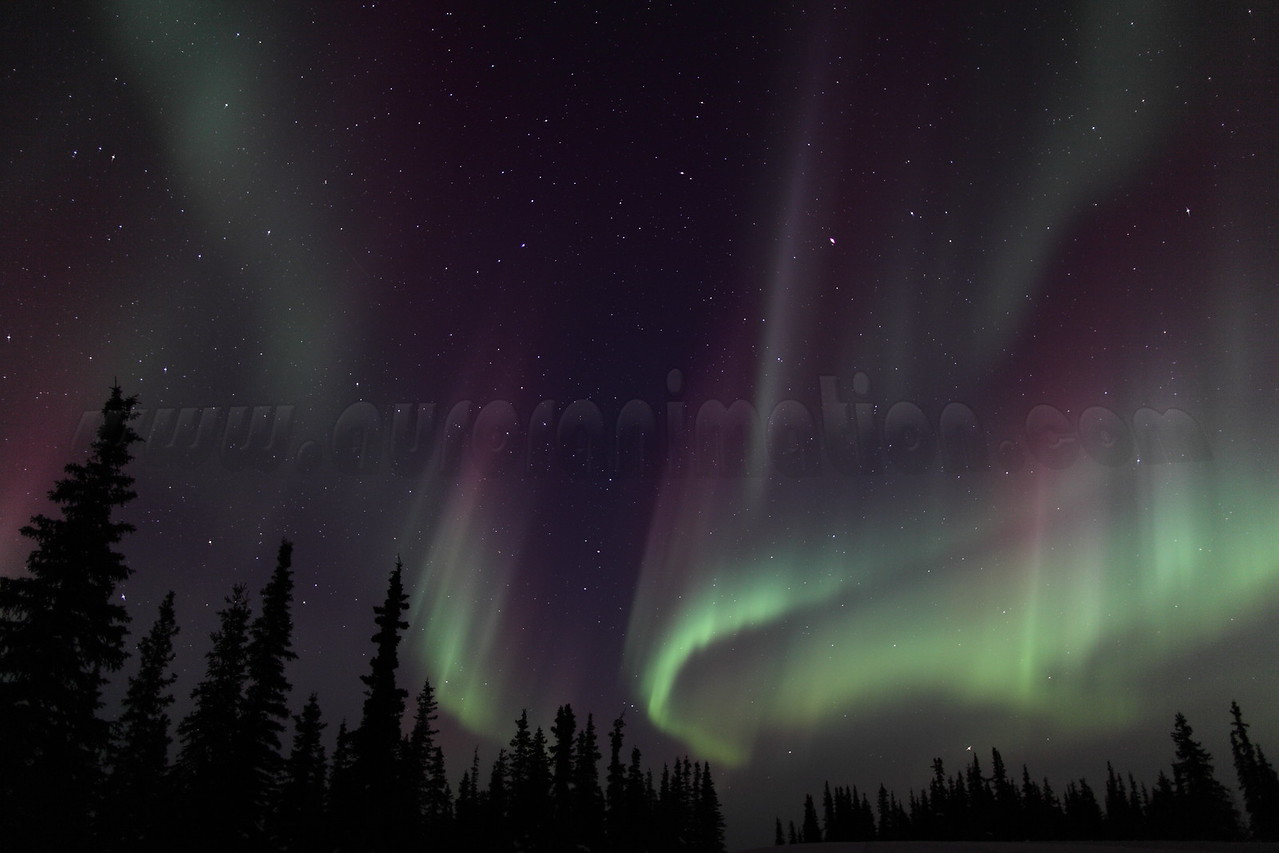 Colorful Northern Lights at 02:07 AM on March 17, 2013 - Arctic Circle, Alaska<br /> <br /> Canon 5D MKII with EF 24mm f/1.4L II