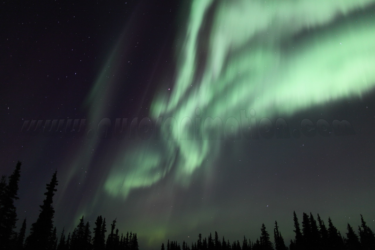 Bright auroral curtains at the Arctic Circle in Alaska on March 17, 2013 - 01:50 AM<br /> <br /> Canon 5D MKII with EF 24mm f/1.4L II