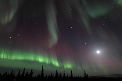 Colorful Northern Lights with Moon, Jupiter and Pleiades at 00:36 AM on March 17, 2013 - Arctic Circle, Alaska Constellations: Monoceros, Canis Minor, Gemini, Orion, Taurus, Auriga and Perseus  Canon 5D MKII with EF 24mm f/1.4L II