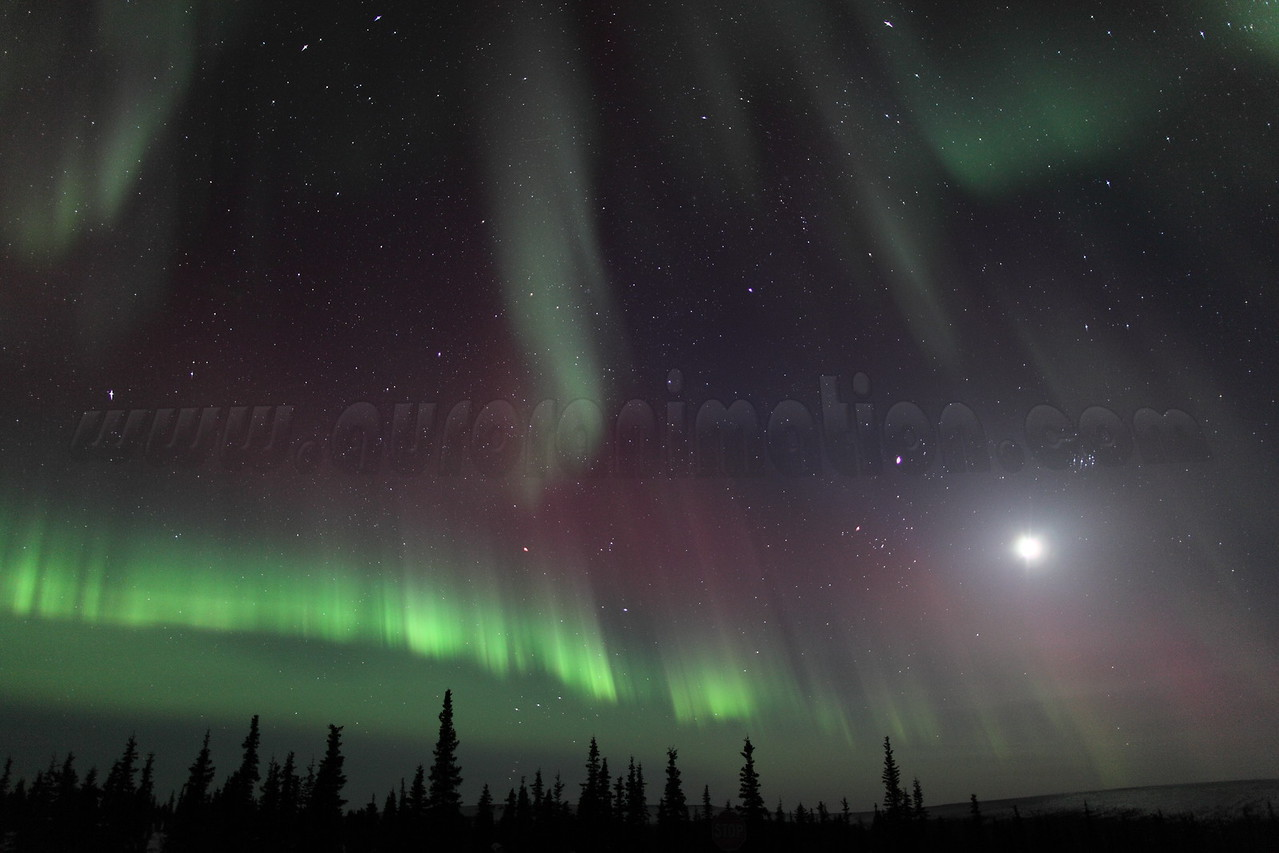 Colorful Northern Lights with Moon, Jupiter and Pleiades at 00:36 AM on March 17, 2013 - Arctic Circle, Alaska<br /> Constellations: Monoceros, Canis Minor, Gemini, Orion, Taurus, Auriga and Perseus<br /> <br /> Canon 5D MKII with EF 24mm f/1.4L II