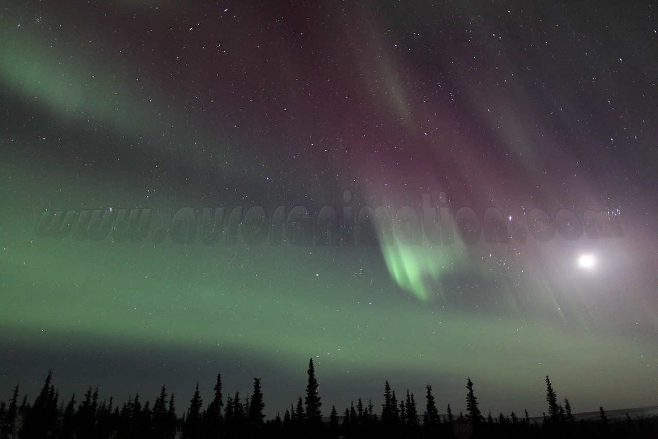 Northern Lights with Moon, Jupiter and Pleiades at 00:22 AM on March 17, 2013 - Arctic Circle, Alaska<br /> Constellations: Monoceros, Canis Minor, Gemini, Orion, Taurus, Auriga and Perseus<br /> <br /> Canon 5D MKII with EF 24mm f/1.4L II