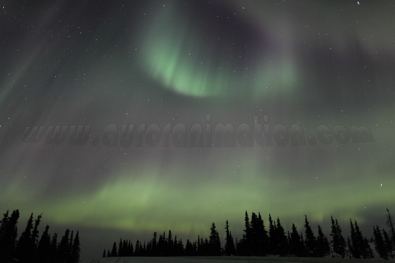 Northern Lights at the Arctic Circle in Alaska on March 17, 2013 - 04:53 AM<br /> <br /> Canon 5D MKII with EF 24mm f/1.4L II