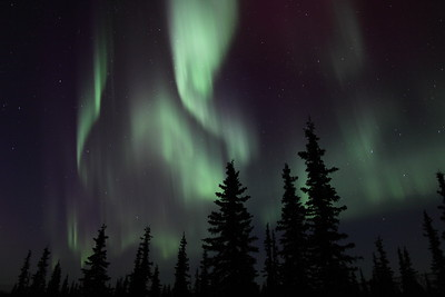 The Northern Lights at the Arctic Circle in Alaska at 11:18 PM on March 16, 2013.  Canon 5D MKII with EF 24mm f/1.4L II