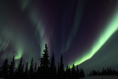 Northern Lights at the Arctic Circle in Alaska on March 16, 2013 - 11:14 PM  Canon 5D MKII with EF EF 50mm f/1.2L