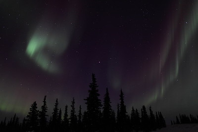 Northern Lights at the Arctic Circle in Alaska on March 17, 2013 - 00:03 AM  Canon 5D MKII with EF 24mm f/1.4L II