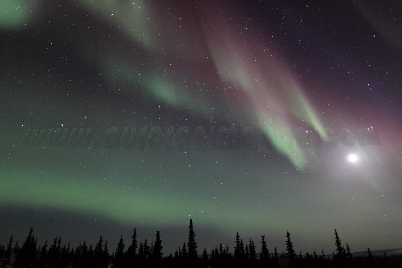 Northern Lights with Moon, Jupiter and Pleiades at 00:17 AM on March 17, 2013 - Arctic Circle, Alaska<br /> Constellations: Monoceros, Canis Minor, Gemini, Orion, Taurus, Auriga and Perseus<br /> <br /> Canon 5D MKII with EF 24mm f/1.4L II